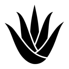 Aloes verra icon - Barbaware