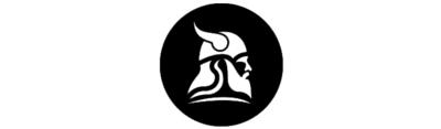 Fit for Vikings logo