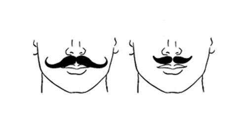 Pleasing The 13 Most Popular Mustache Styles Schematic Wiring Diagrams Amerangerunnerswayorg